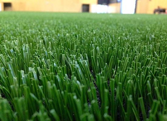 Synthetic Sport Surfaces by Thomas Green